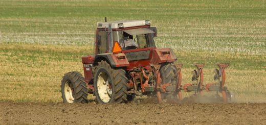 MANGE SKADER: De neste månedene er det statistisk sett særlig farlig å være bonde, ifølge en kartlegging av ulykker i landbruket. (Foto: Colourbox)